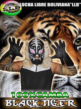 VUELVE EL 100% CAMBA BLACK TIGER