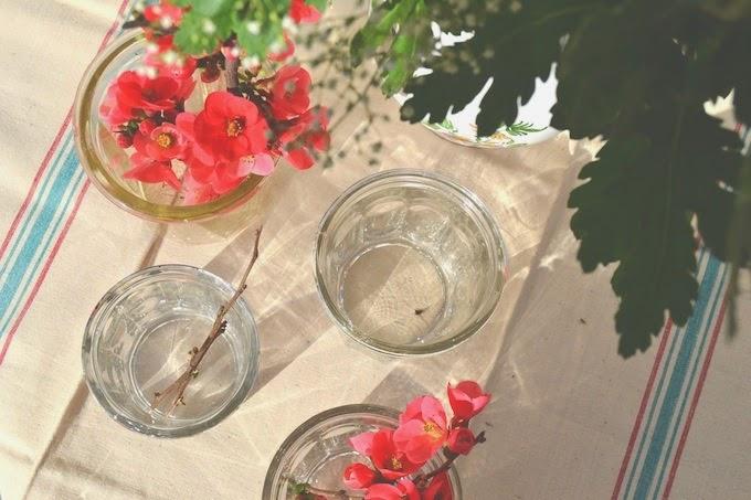vasos y paños antiguos