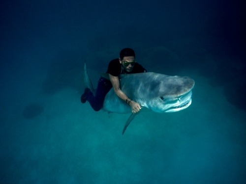 Trendzeta, Awesome blog, Ocean water post