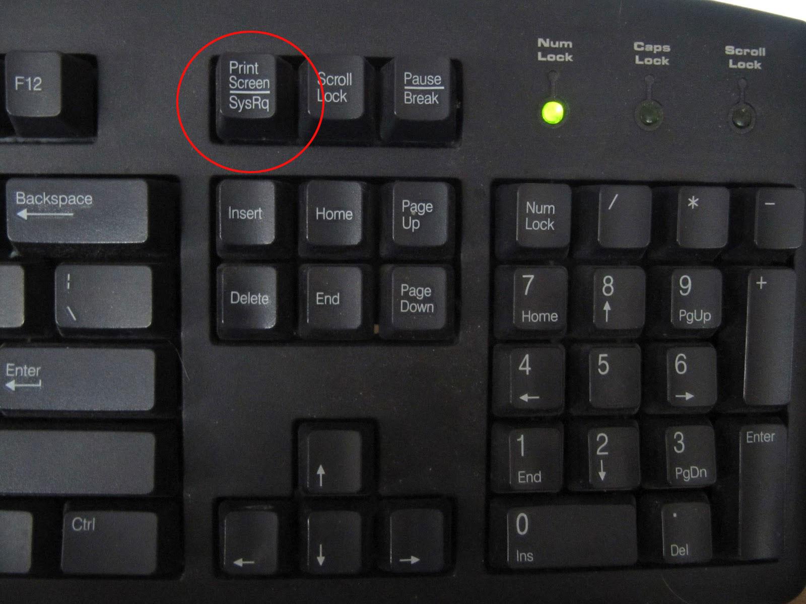 Как сделать скин если на ноутбуке