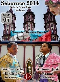 Feria de Seboruco 2014