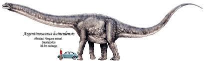 Resultado de imagen de argentinosaurio