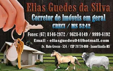 ELIAS GUEDES CORRETOR