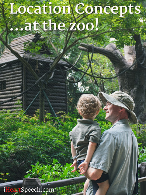 toddler with father looking at a monkey at a zoo