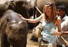 Babe n Baby Elephant