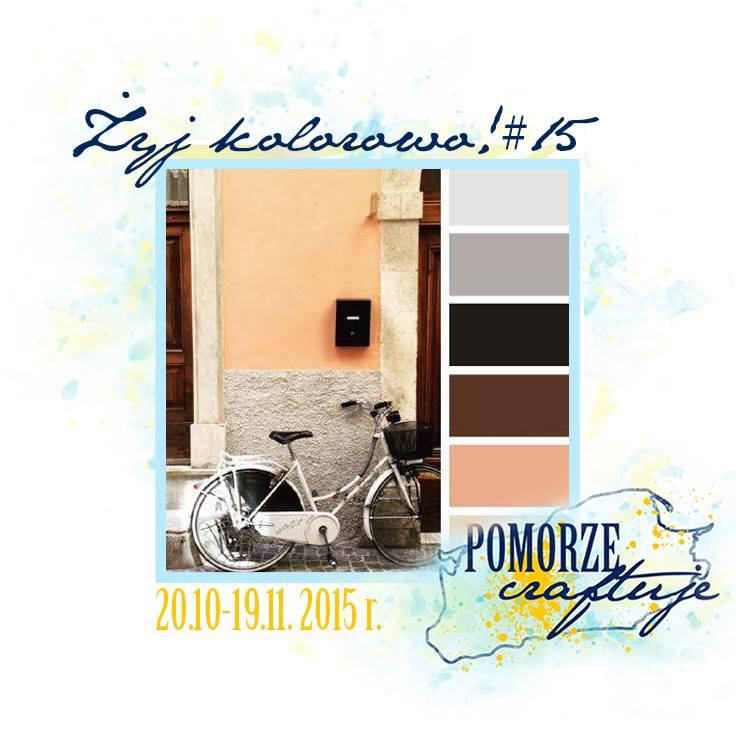 http://pomorze-craftuje.blogspot.com/2015/10/zyj-kolorowo15.html