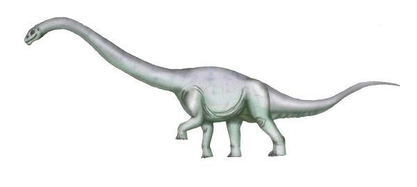 dinosaurios de argentina Tehuelchesaurus