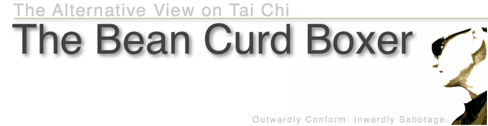 The Bean Curd Boxer: The Alternative View on Tai Chi