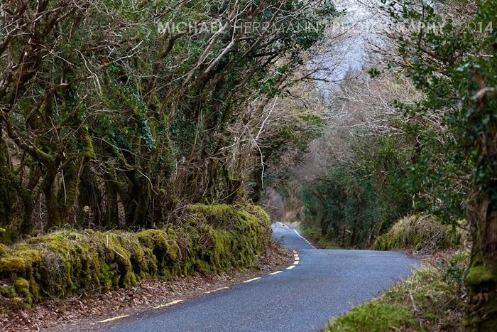 Ballagh Oisín , photography workshop Ireland
