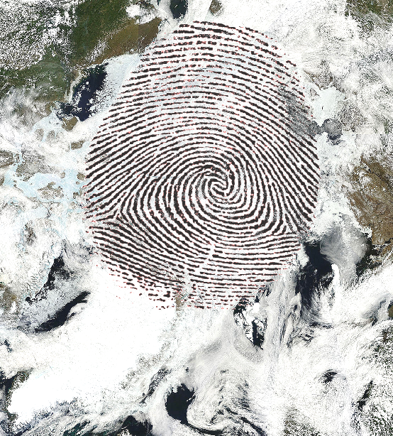 human fingerprint