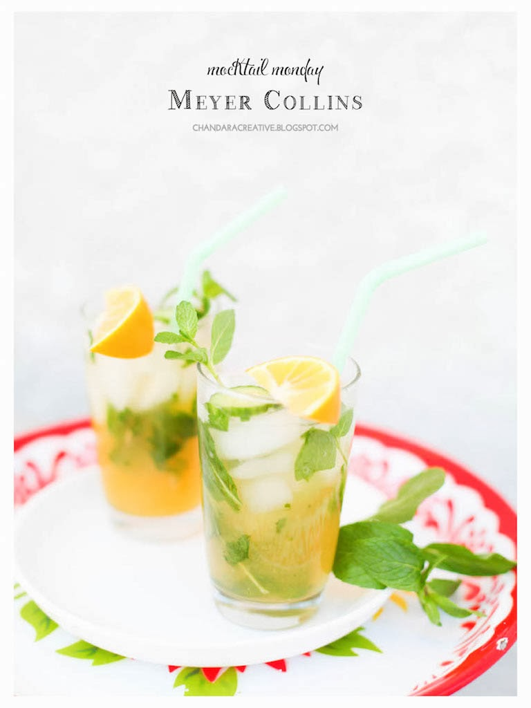 Meyer Collins Mocktail | via Chandara Creative