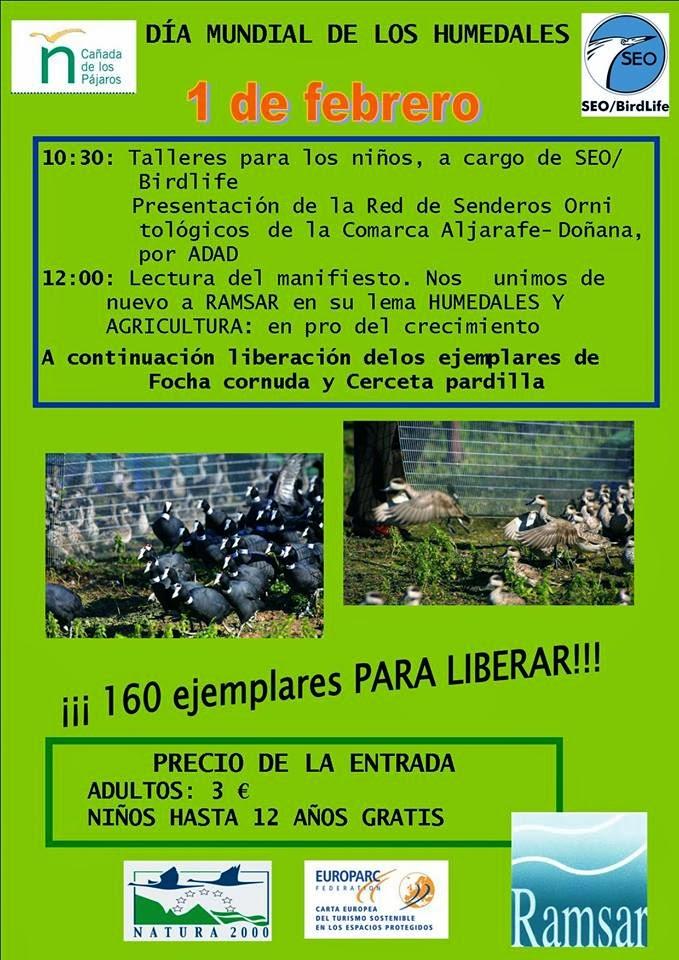 El Grupo Local SEO-Sevilla de SEO/BirdLife celebra el Día de los Humedales 2014 en la Cañada de los Pájaros.