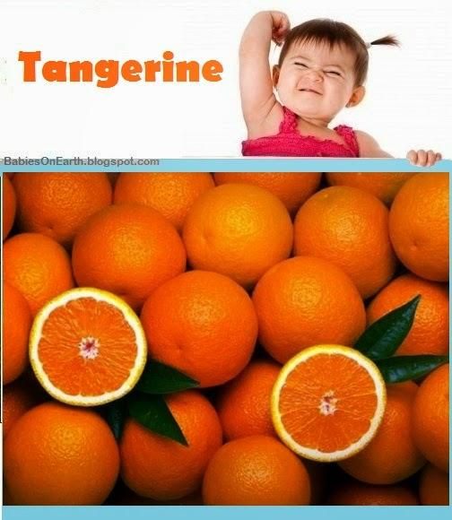 Baby Tangerine
