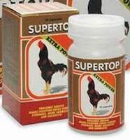 supertop jamu untuk ayam aduan