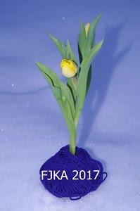 FJKA 2017