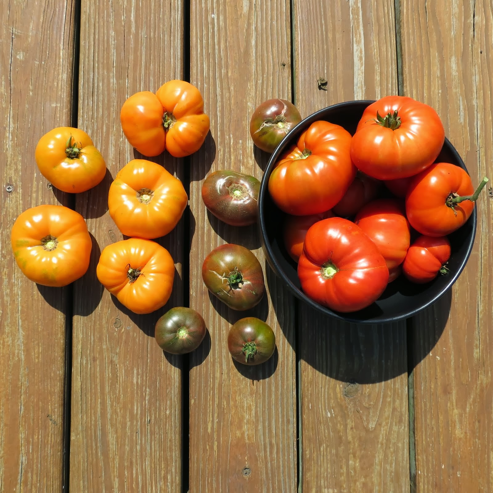 Ten Tips About Tomato Plants – The Rusted Garden
