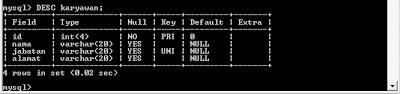 Field pada tabel di MySQL
