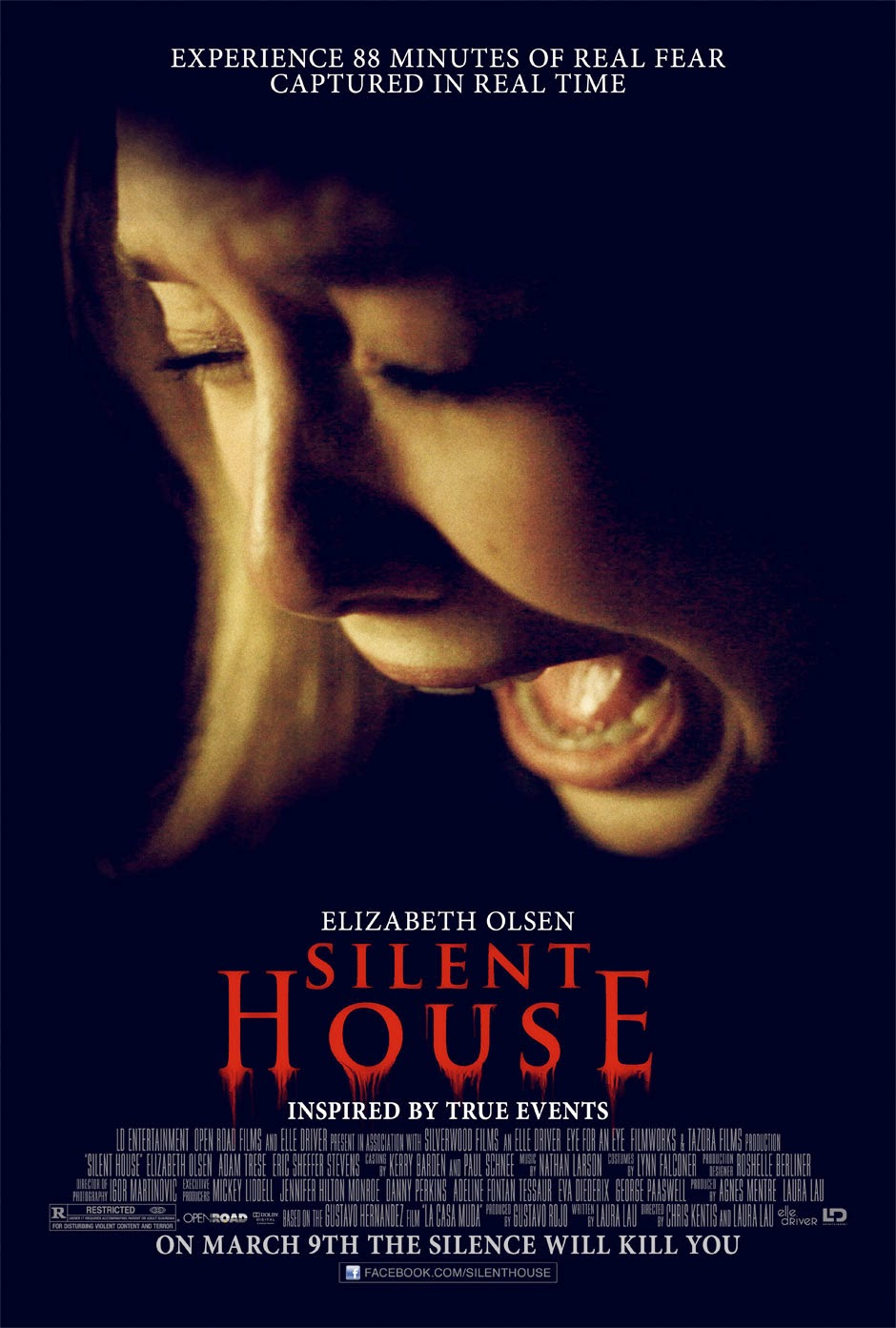 Silent House (2011) BluRay
