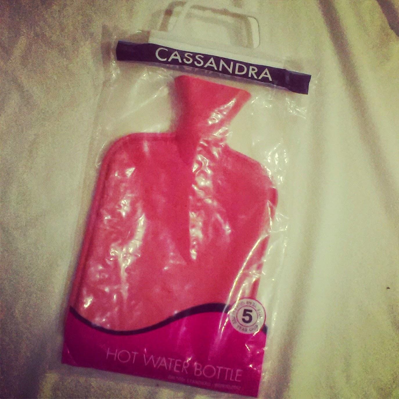 Cassandra the Hot Water Bottle
