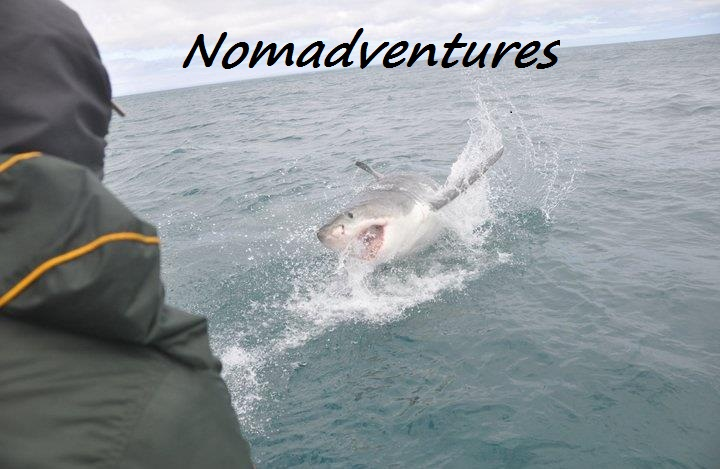 Nomadventures