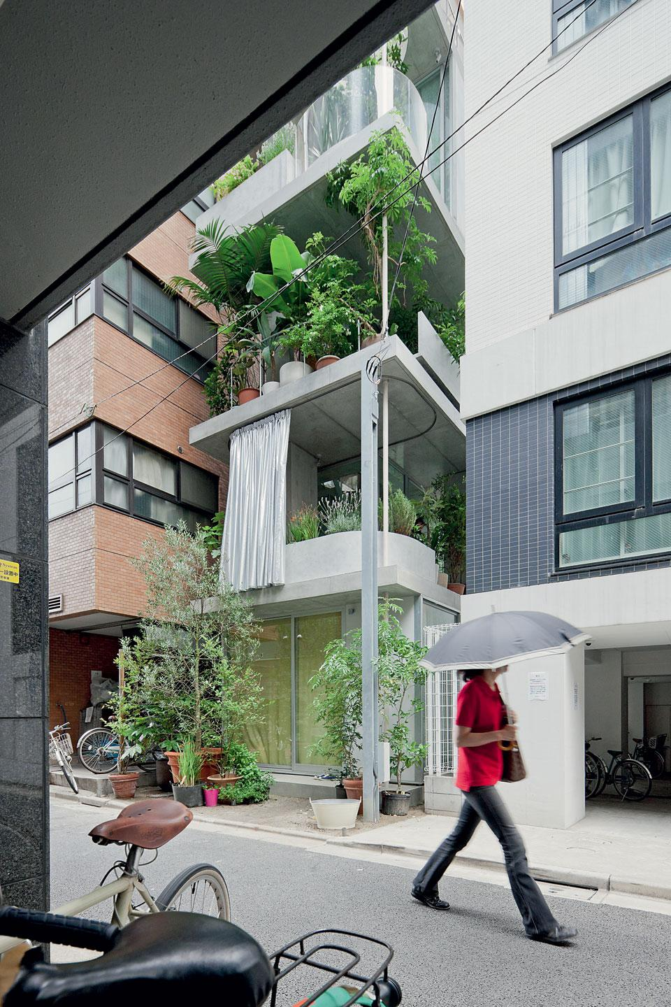 The temples of consumption ryue nishizawa vertical for Japanese house garden