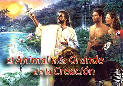El Animal más Grande de la Creación