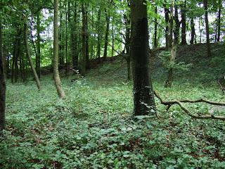 Wallabschnitt im Westen des Oppidums Finsterlohr-Burgstall
