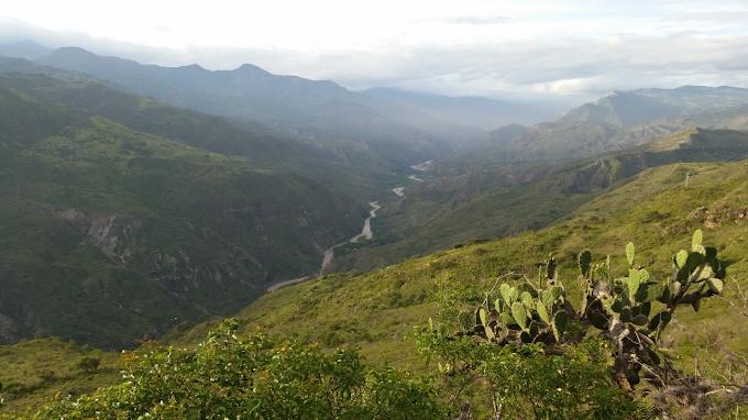 Bosques secos del Chicamocha: La importancia de preservar este ecosistema con el apoyo de la comunidad