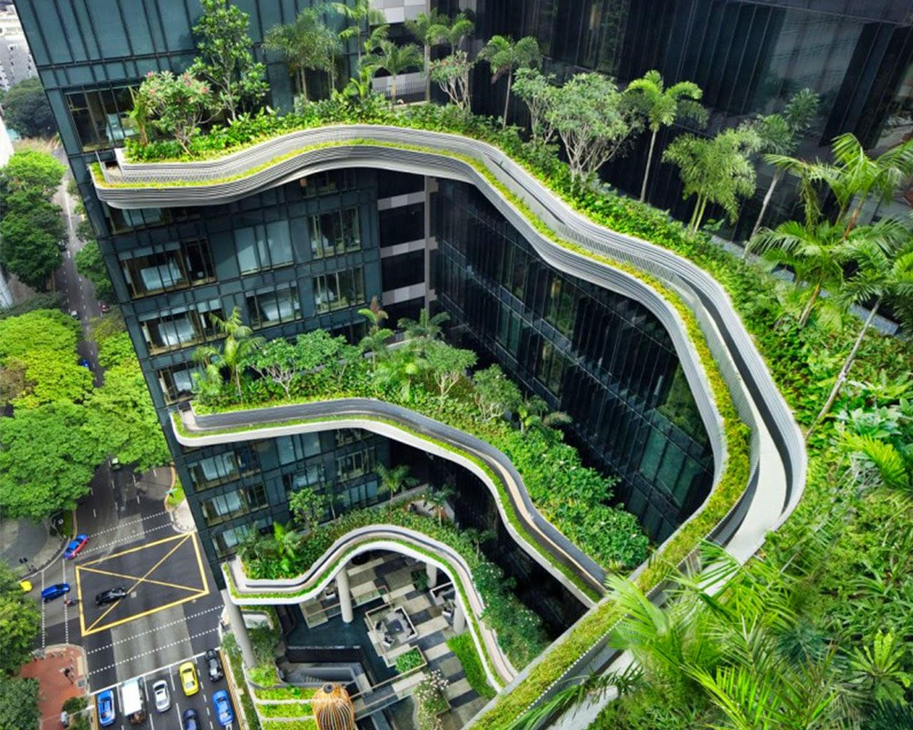 Green Organic City