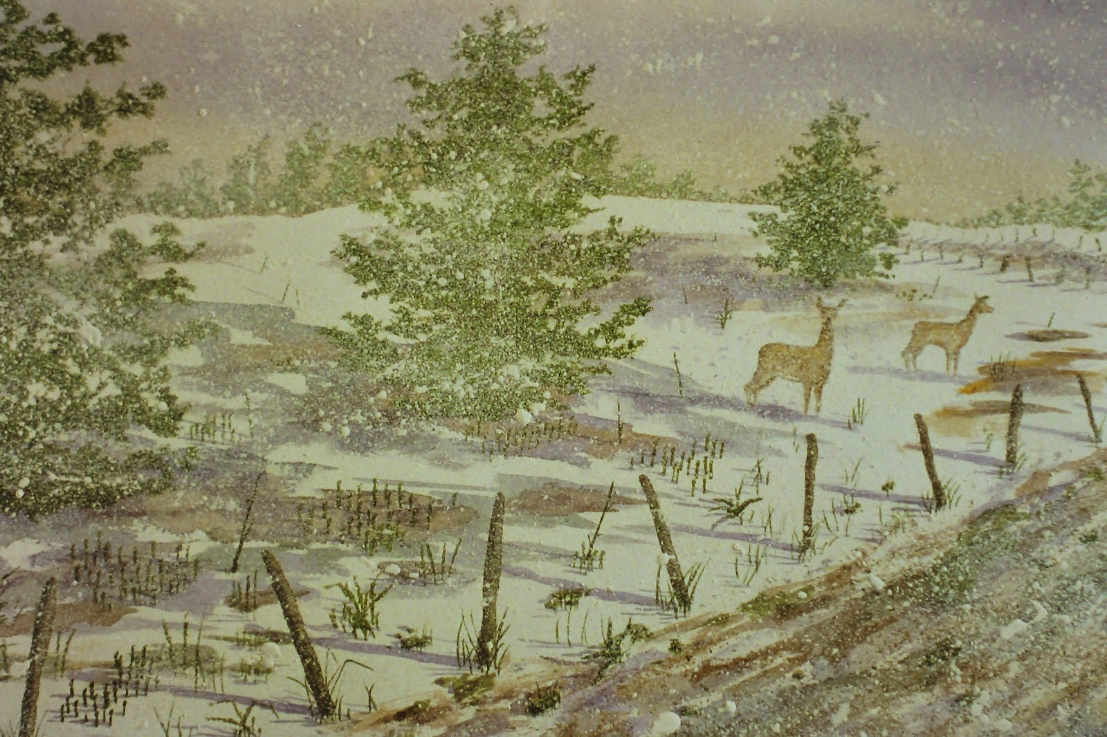 Two Deer, near Little Keithock Farmhouse, Brechin Road, Angus, Scotland  28x40 inches. Watercolor on paper, c. 1991.  In a private collection in Brechin, Scotland by Lenny Campello