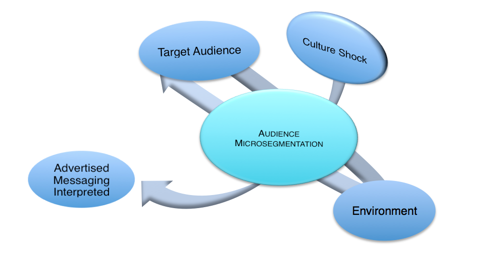 Audience Microsegmentation and Culture Shock Model