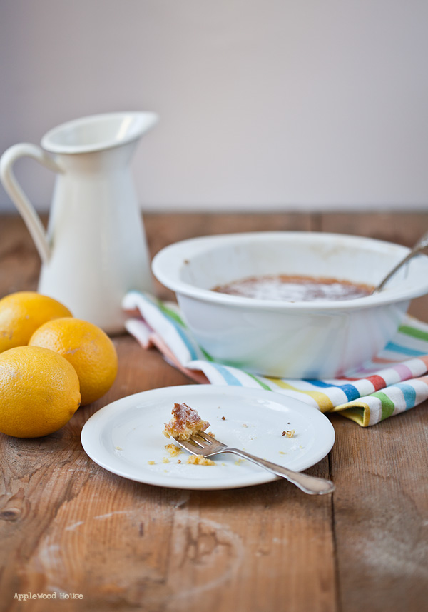 Zitronen Pudding