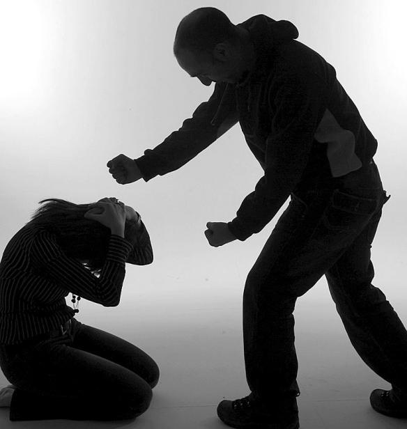 La Policía ante la Violencia de Género