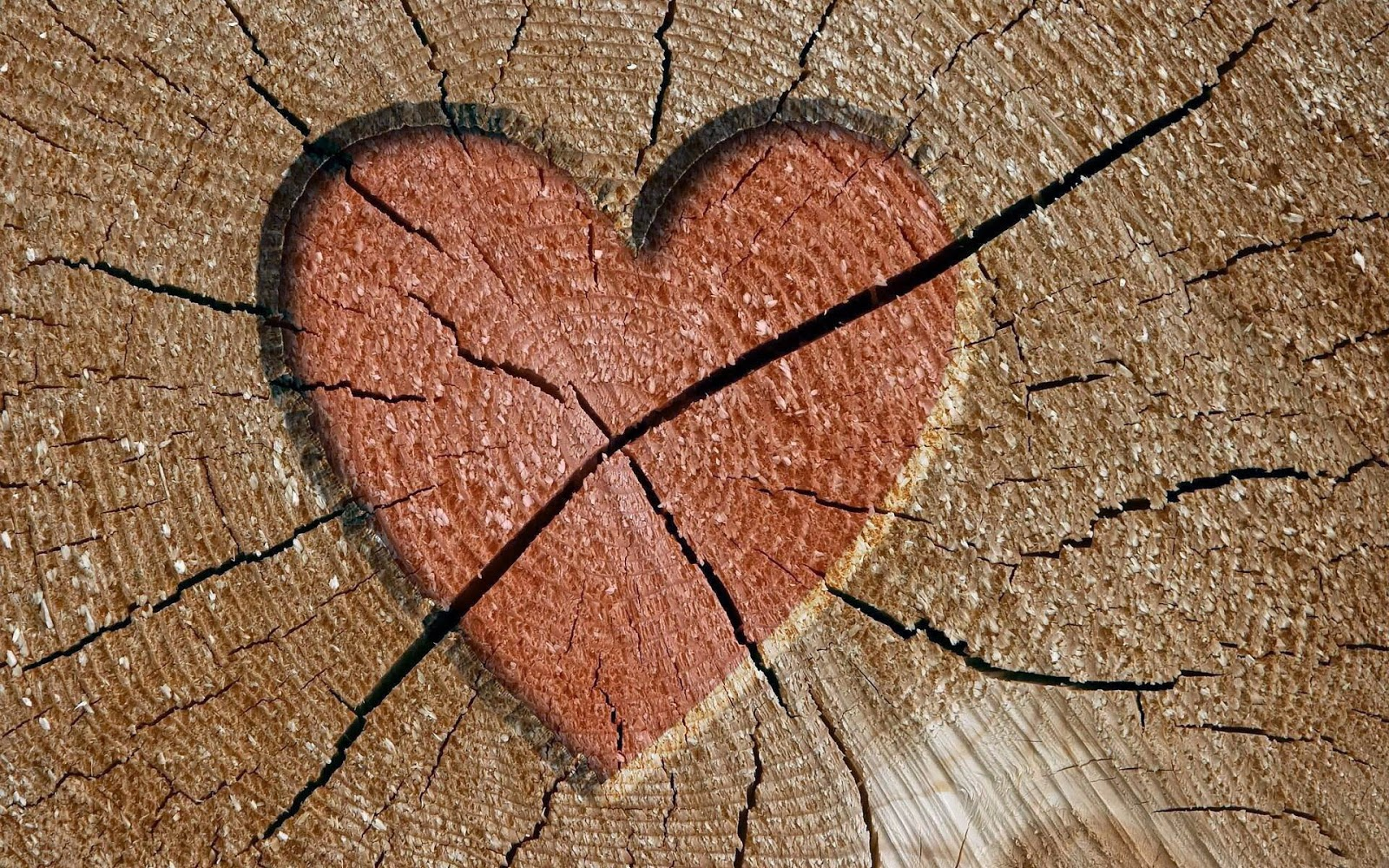 Broken Heart HD Wallpapers And Images In Bad Condition