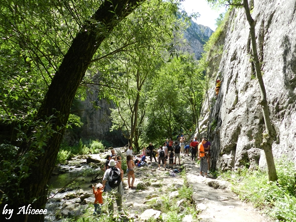alpinisti-in-cheile-turzii