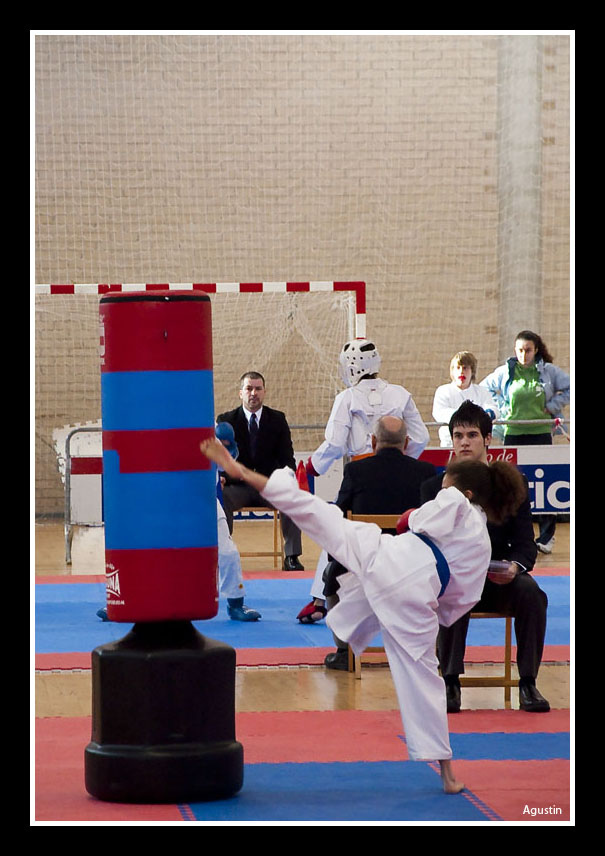 Karate navarra 2011 02 13 xxiv juegos deportivos de navarra for Gimnasio kanku