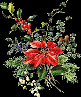 Gifs y fondos pazenlatormenta im genes de flores de navidad - Imagenes flores de navidad ...