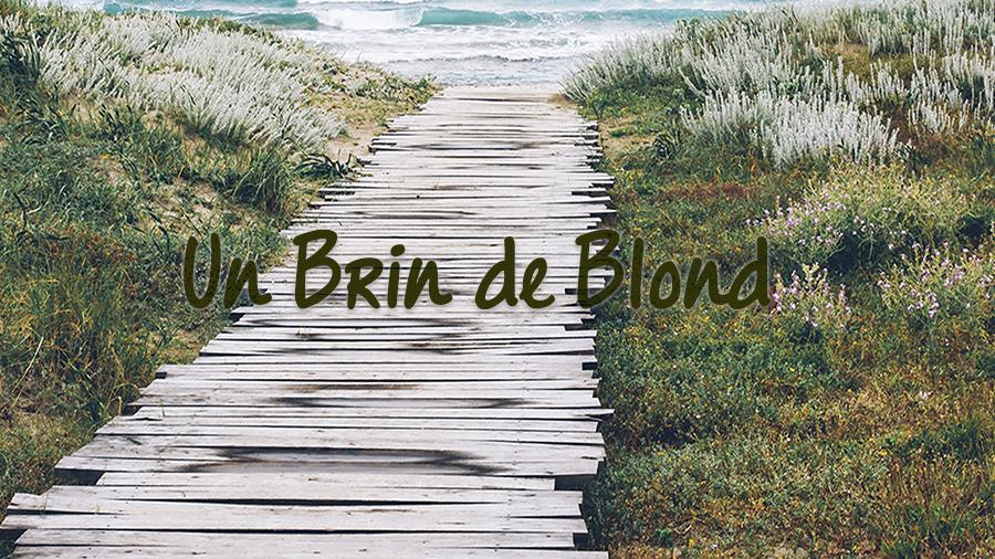 Un Brin de Blond