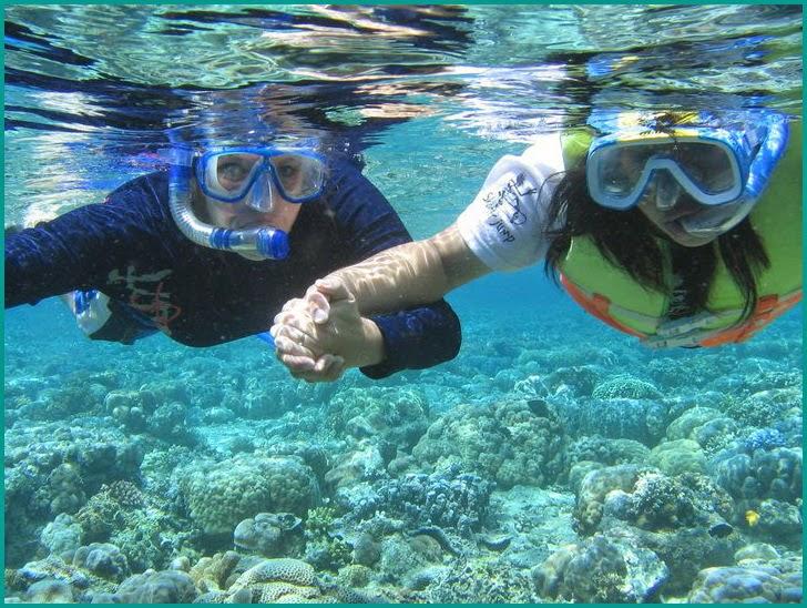 Taman Nasional Bunaken - inilah 5 Wisata Bawah Laut Indonesia Terpopuler yang harus Anda kunjungi.