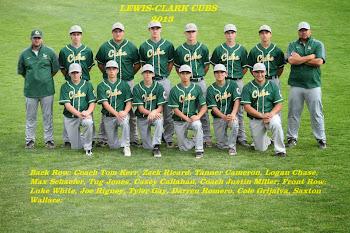 2013 Cubs
