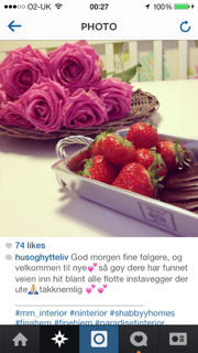 Instagram-photo-roses-strawberries