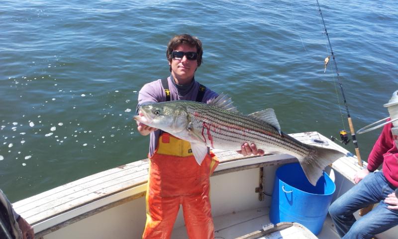 hooks sportfishing report