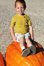 Little Caleb picking out his Pumpkin