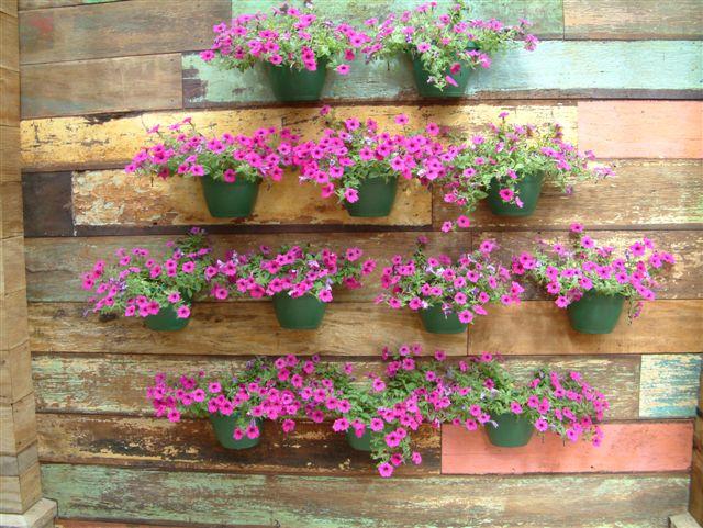 jardim vertical latas : jardim vertical latas:Espero que tenham gostado das idéias