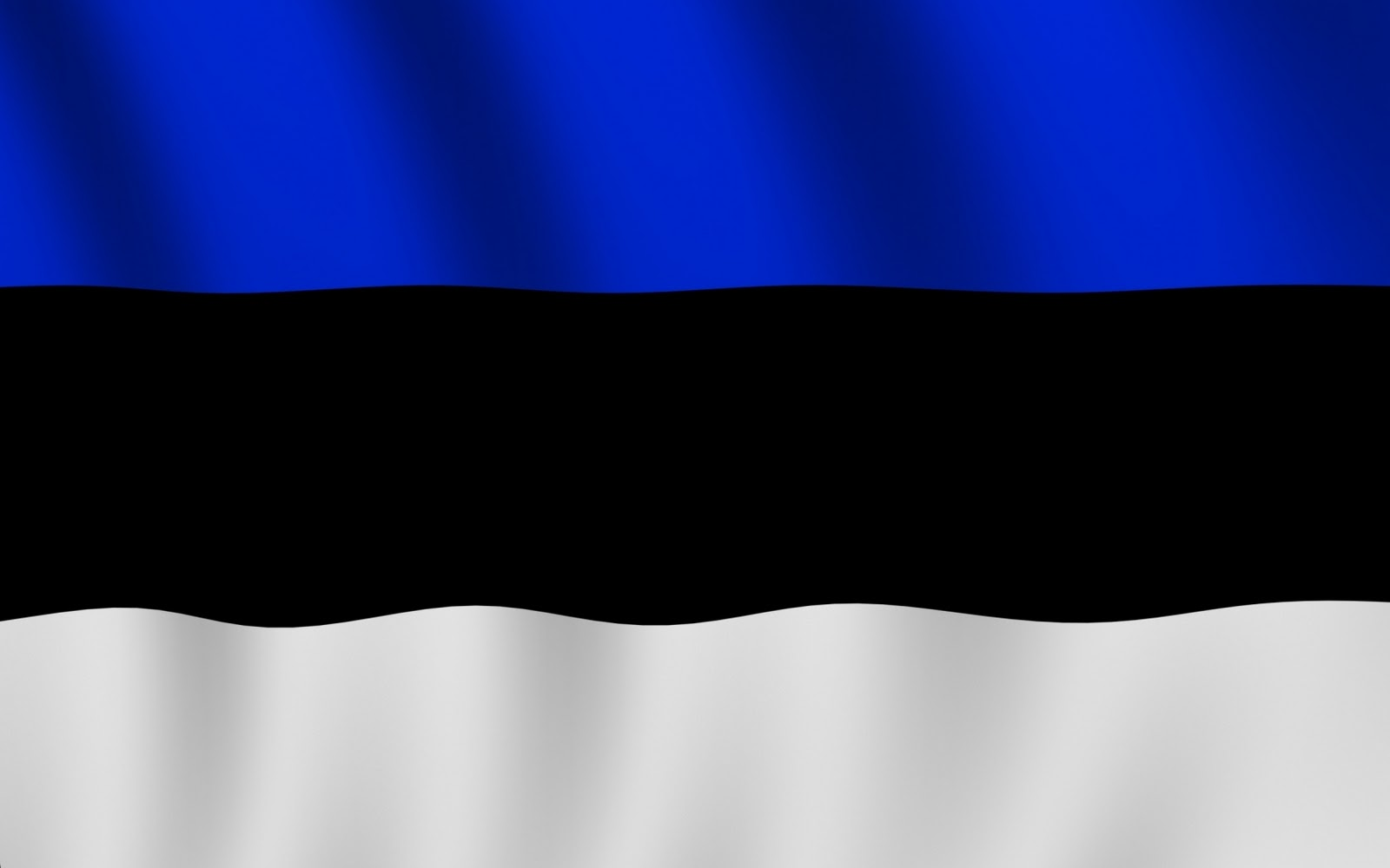 Estonia Flag Pictures