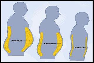 cara efektif mengecilkan perut buncit