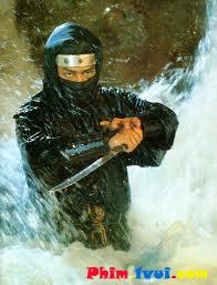 Phim Ẩn Giã Sa Lưới - Ninja In The Dragons Den [Vietsub] Online