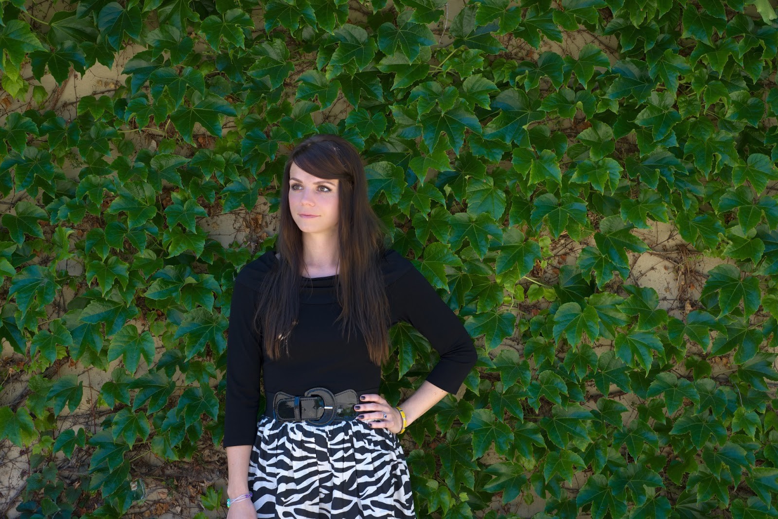 Long Brown Hair, Zebra Skirt