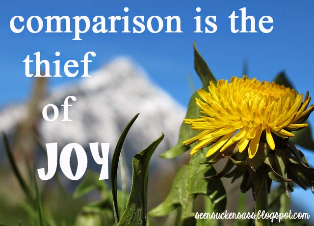 Wednesday Wisdom:  Comparison is the Thief of Joy