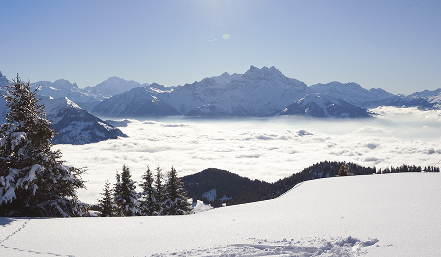 Photo: Skiing  above the Clouds.